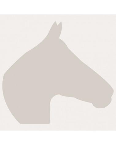 Stencil Figura 021 Cabeza Caballo