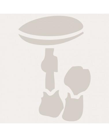 Stencil Aerografia Tattoo Infantil 009