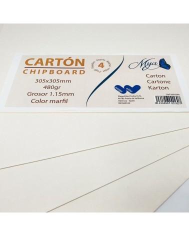 Pack 011 Carton 480gr 305x305mm - 1