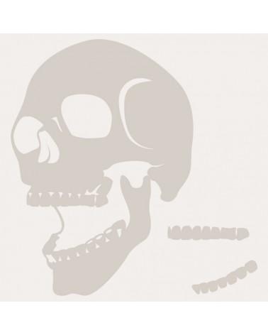 plantilla-stencil-aerografia-calavera-002-1