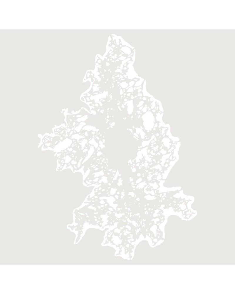 plantilla-stencil-aerografia-textura-001